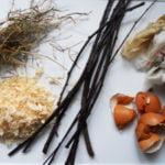 Créer son compost : un engrais 100% naturel et 100% efficace