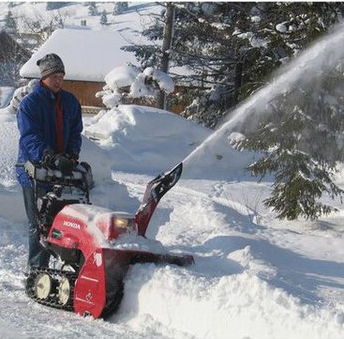 accessoires motoculteur fraise a neige