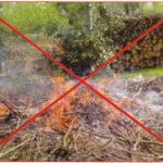 Interdiction de brûler : que faire de nos déchets verts ?