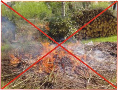 D chets verts quoi en faire tous savoir sur - Autorisation de faire du feu dans son jardin ...
