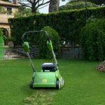 Scarification pelouse : étape par étape