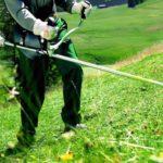 Quelle tete debroussailleuse choisir en fonction de vos besoins au jardin – Part I