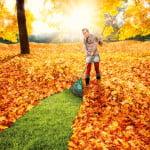 9ramasser-les-feuilles