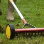 Bien choisir son scarificateur pelouse