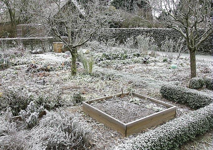 Que faire au jardin en f vrier blog equip 39 jardin - Que faire au jardin en fevrier ...