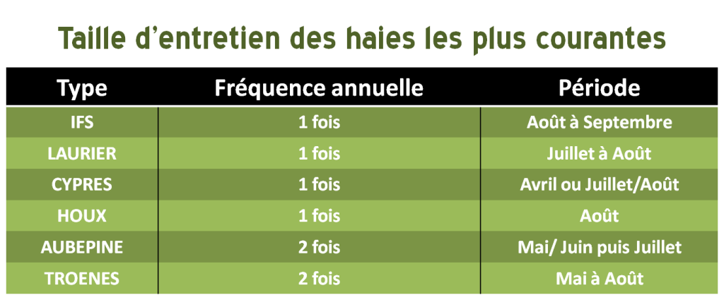taille des haies