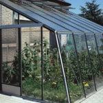Préparer sa serre pour l'hivernage des plantes