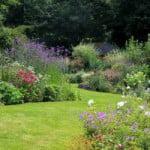 Débroussaillage : Les étapes au jardin