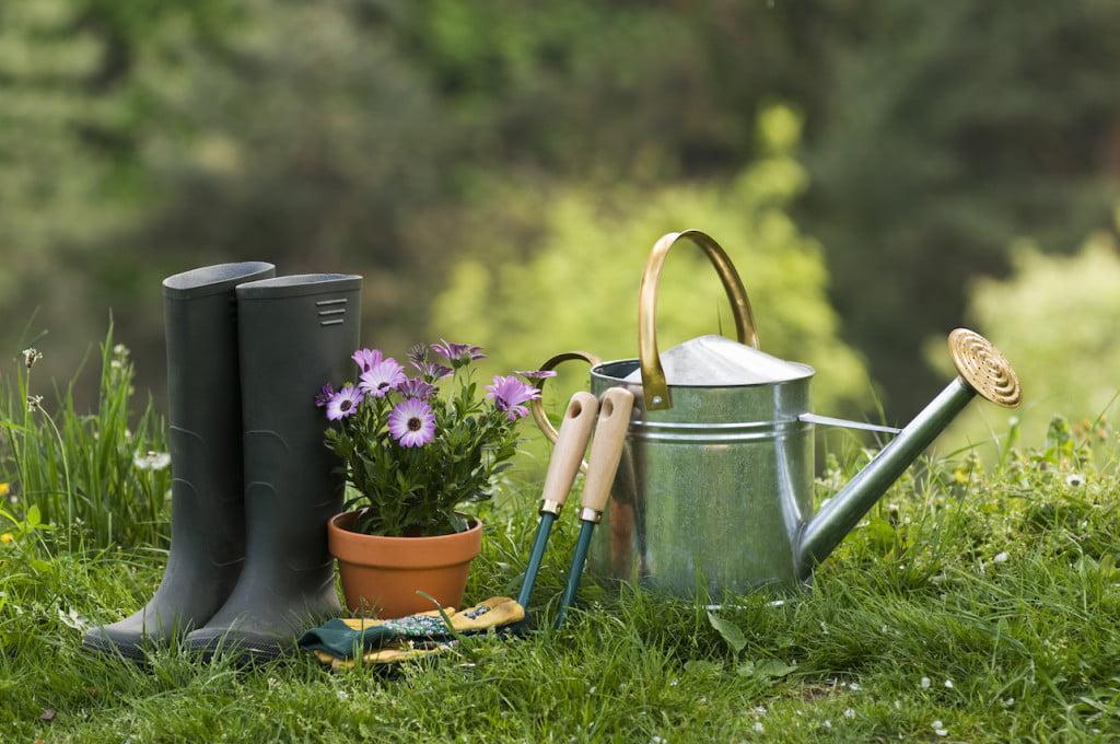 Les bienfaits du jardinage sur la sant for Tout sur le jardinage
