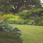 Jardin bio & malin