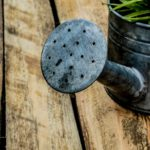 watering-can-1506750