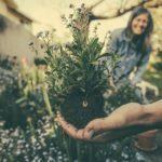 Septembre au jardin : Tout ce qu'il faut faire