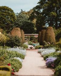 le_jardin_à_la_française