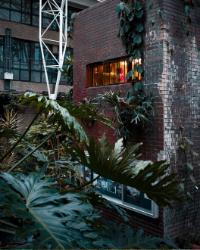 jardin_de_ville