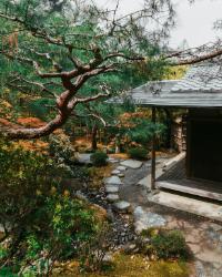jardin_zen